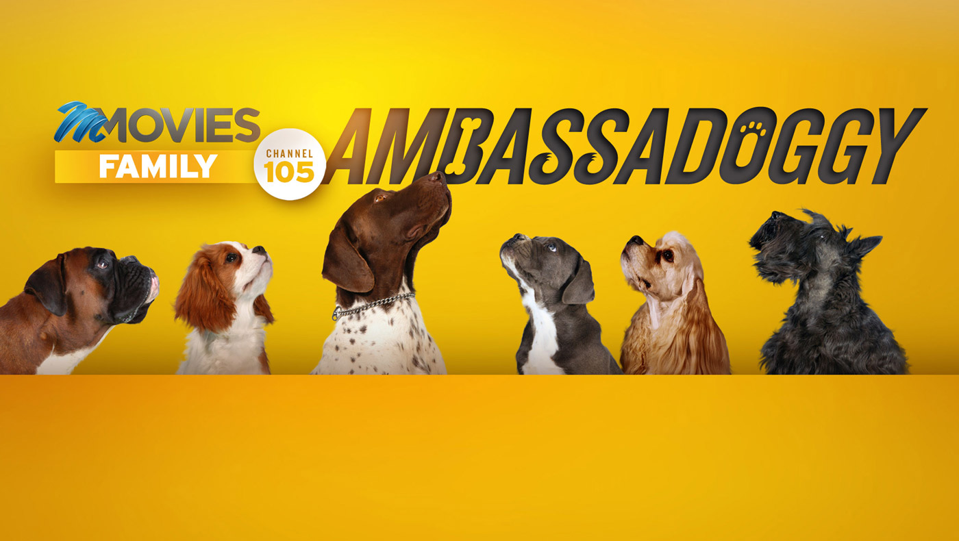 M-NET Movies Family is on the prowl for an #Ambassadoggy!